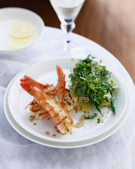 Plate of prawn salad with potatoes and micro herbs — Stock Photo