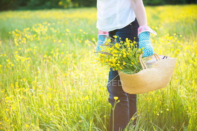 Cropped mid-section holding basket of flowers — Stock Photo