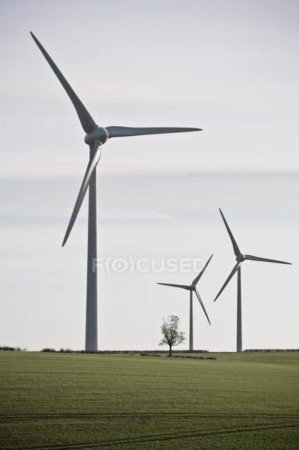 Éoliennes dans le paysage verdoyant — Photo de stock