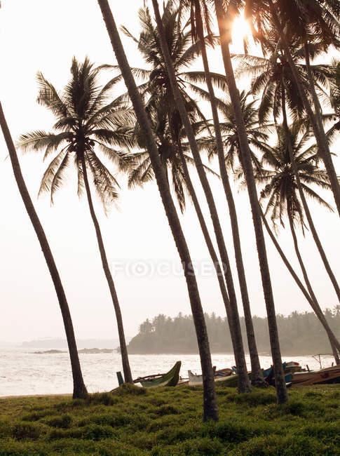 Рыбацкие лодки на пляже в Тангалле — стоковое фото