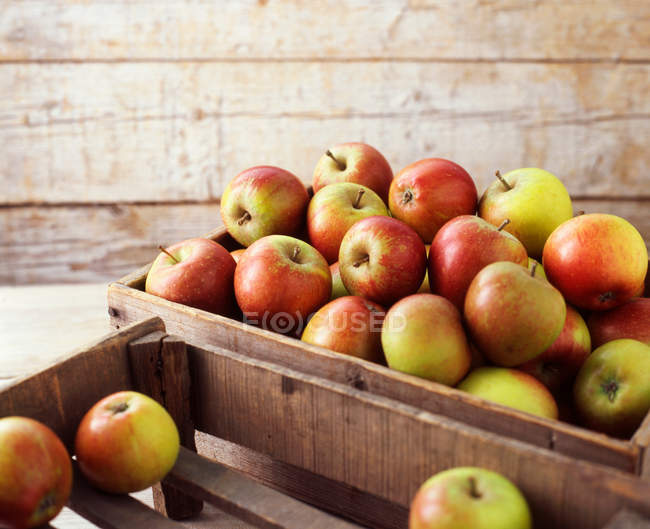Wooden crates of organic apples — Stock Photo