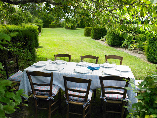 Столовий сервіз в саду при яскравому сонячному світлі — стокове фото