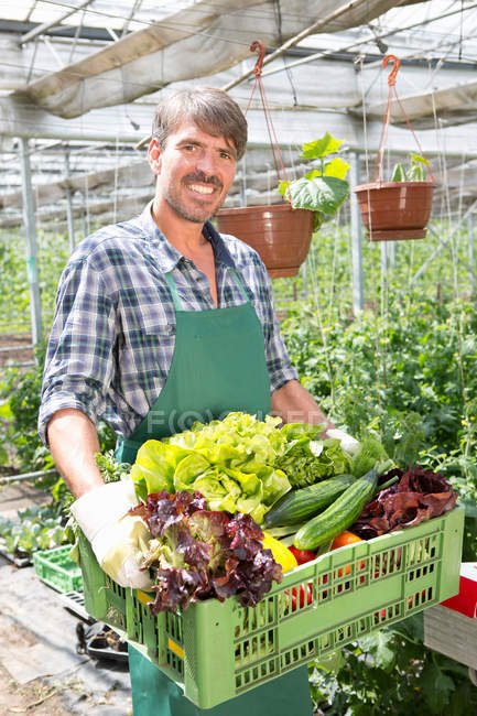 Portrait of organic farmer carrying a tray of fresh produce — Stock Photo