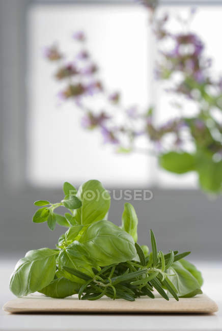 Rosemary and basil leaves on cutting board — Stock Photo