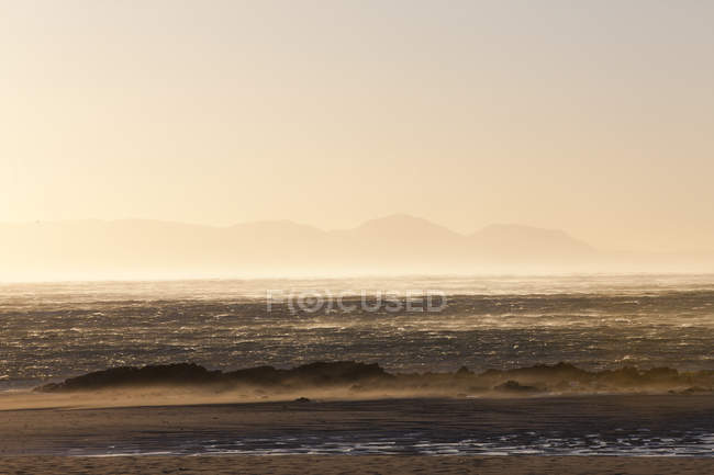 Mar con olas de surf en la luz del atardecer - foto de stock