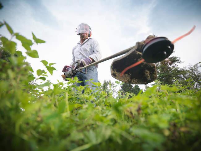 Садівник носіння вухо захисників і visor, за допомогою strimmer — стокове фото