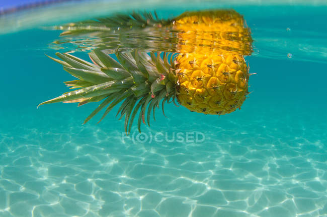 Abacaxi, flutuando na piscina — Fotografia de Stock