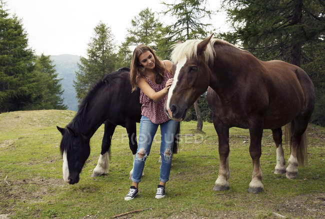 Young woman stroking palomino horses on hill, Sattelbergalm, Tyrol, Austria — стоковое фото