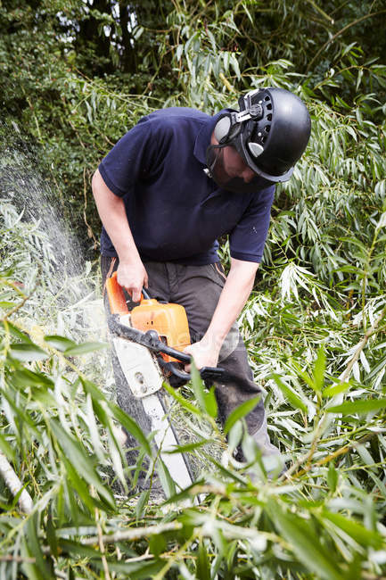 Worker using chainsaw in forest — Stock Photo