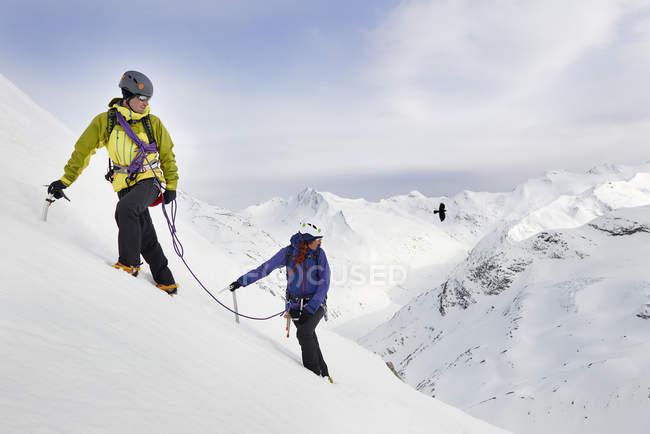 Альпіністів, за зростанням засніжені гори, Саас, Швейцарія — стокове фото