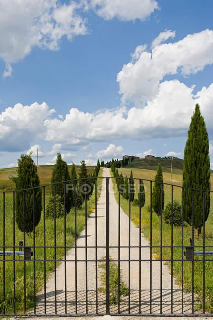 Portão e cipreste árvores sob o céu azul em siena — Fotografia de Stock