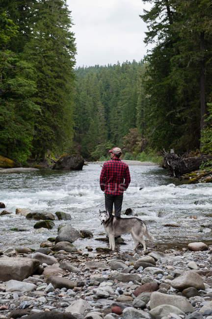 Vue arrière de l'homme avec chien au bord de la rivière et regardant ailleurs, Packwood, Washington, États-Unis — Photo de stock