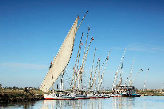 Felucca boats moored on river nile — Stock Photo