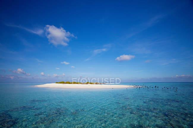 Bellissima isola nell'oceano — Foto stock