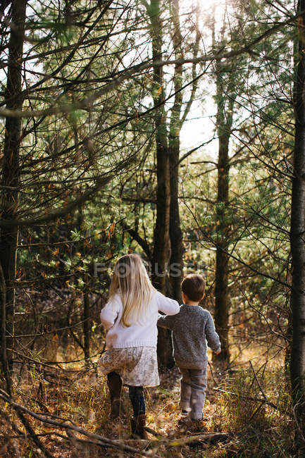 Back view of Siblings holding hands walking in forest — Stock Photo