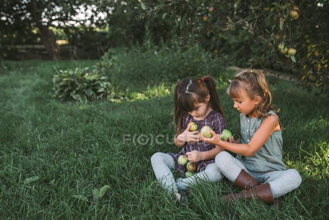Duas meninas coletando maçãs na fazenda — Fotografia de Stock