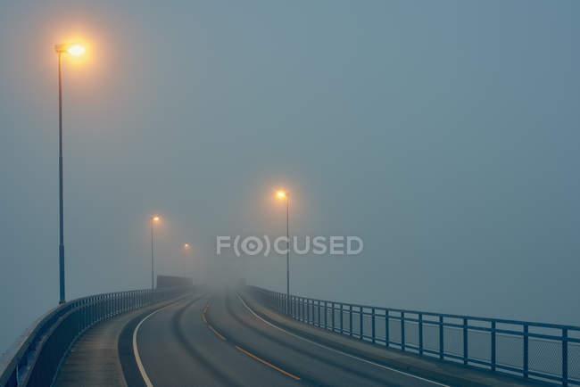 Diminishing perspective of misty road illuminated by street lights — Stock Photo