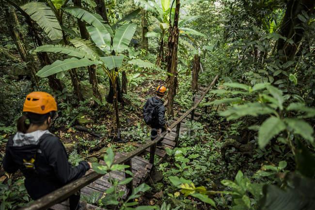 Туристи перетину дерев'яний міст в лісі, бан Неглюанг, провінція Шамссак, Paksong, Лаос — стокове фото