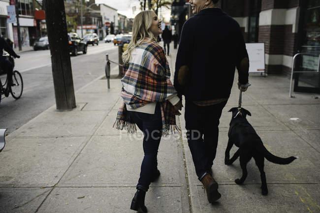 Coppia giovane che cammina con cane lungo la strada, vista posteriore — Foto stock