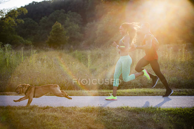 Молодая пара и собака бегут под солнцем в парке — стоковое фото