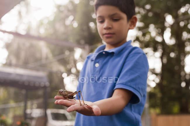 Мальчик наблюдает за кузнечиком в саду — стоковое фото