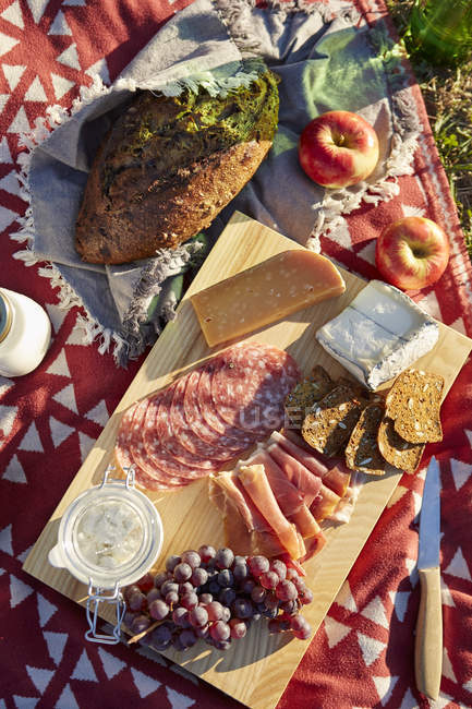 Overhead view of fresh picnic food with cheese, salami and grapes — Stock Photo