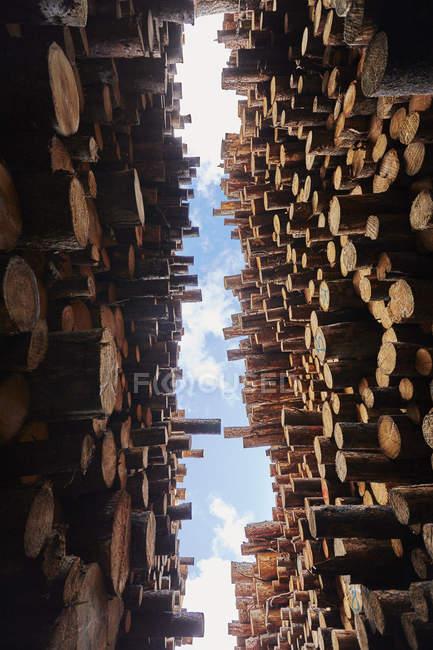 Vista inferiore di legno impilato sotto il cielo nuvoloso blu — Foto stock