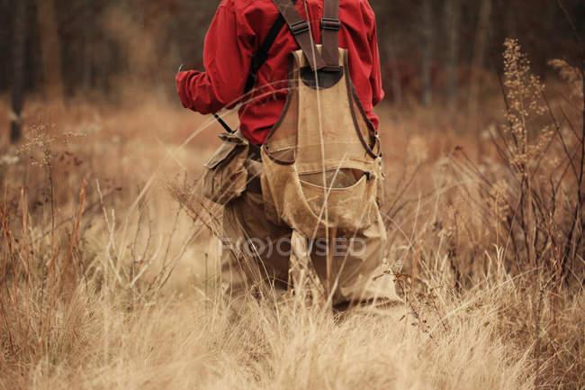 Vista posterior del cazador codornices caminando por alto cepillo - foto de stock