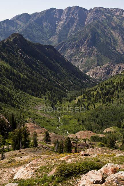 Mountains covered in lush greenery, Utah — Stock Photo