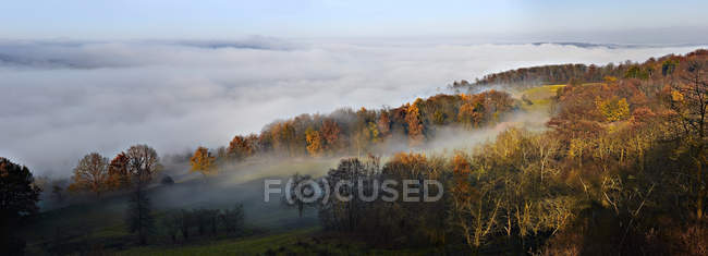 Morning mist and clouds above autumn forest — Stock Photo