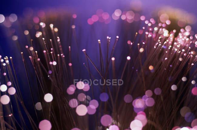 Освещенная волоконно-оптические кабели с неоновый свет — стоковое фото