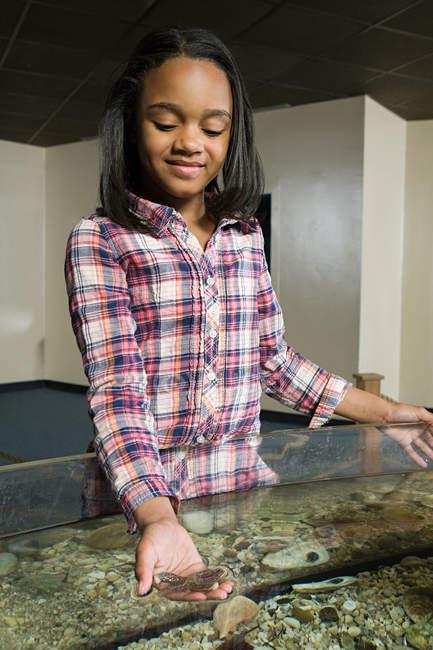 Mädchen hält Seesterne im Aquarium — Stockfoto