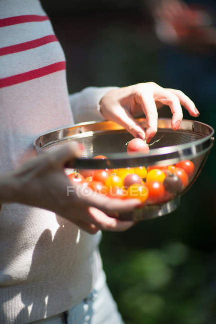 Cropped image of Woman holding sieve with tomatoes — Stock Photo