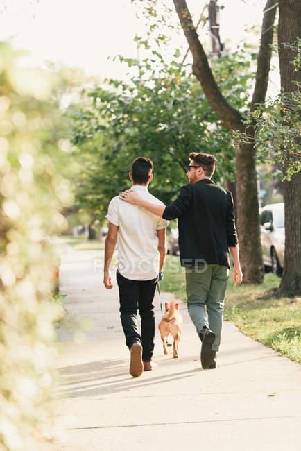 Vue arrière du jeune couple masculin marchant avec chien sur le trottoir de banlieue — Photo de stock