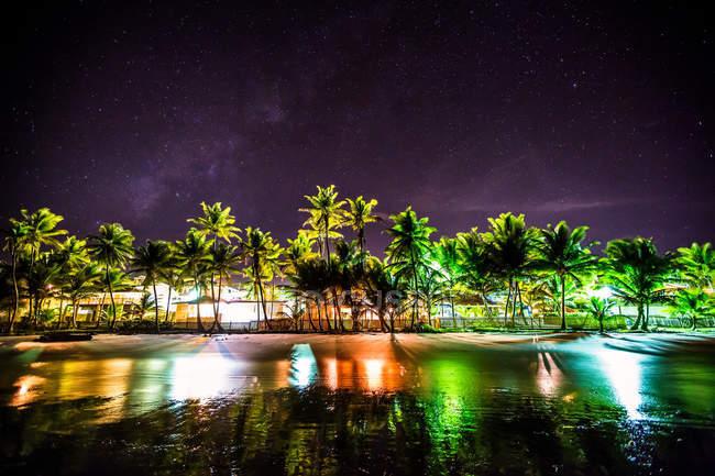 Palme sulla costa urbana — Foto stock