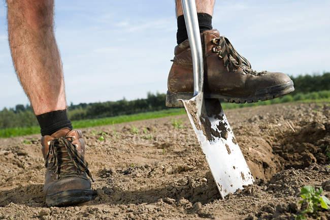 Agriculteur, creuser le sol en champ, recadrée tir — Photo de stock