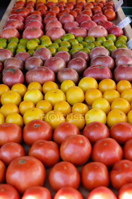 Red, green and yellow tomatoes on market stall — Stock Photo