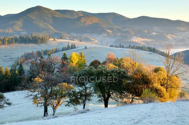 Mattina gelida a Krasnik zona villaggio — Foto stock