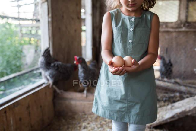 Imagem cortada de menina em galinheiro, segurando ovos frescos — Fotografia de Stock