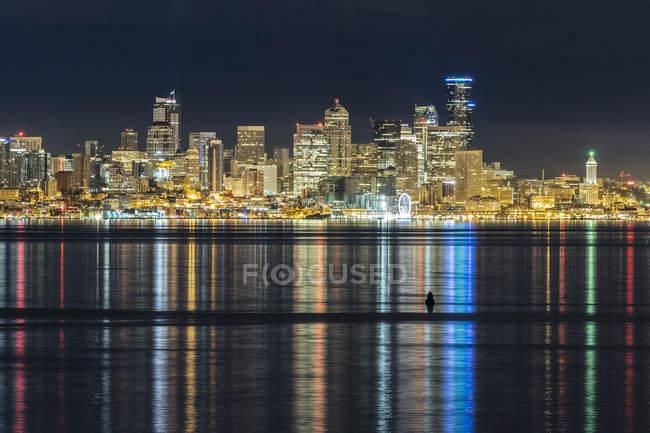 Vista panorâmica da majestosa paisagem urbana à noite — Fotografia de Stock