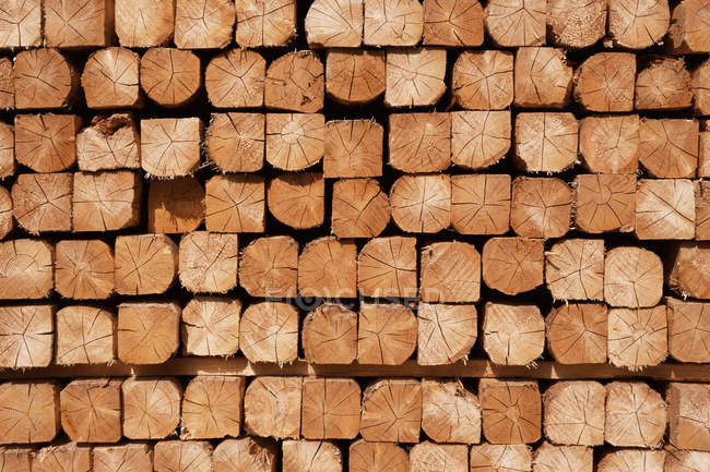 Industrial stacked wood, carpentry background — Stock Photo