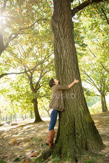 Женщина обнимает дерево в парке — стоковое фото