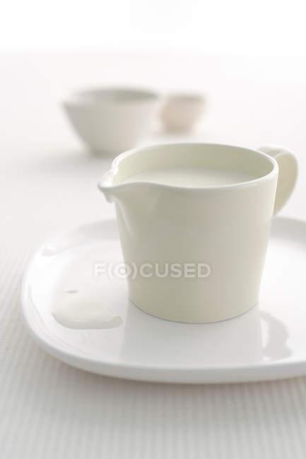 Vista de primer plano de la jarra de leche en la bandeja - foto de stock