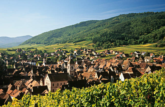 Idyllic view of houses and green mountains at Riquewihr alsace, france, europe — Stock Photo