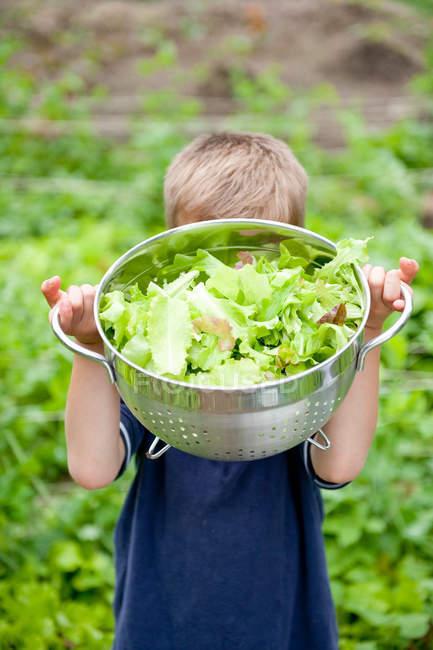 Хлопчик з чаші салат з саду — стокове фото