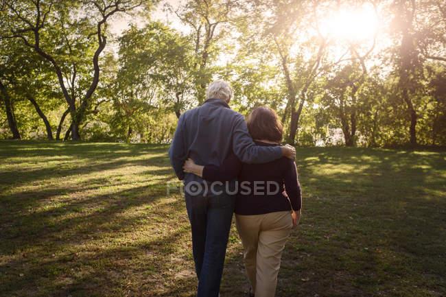 Vue arrière d'un couple romantique de personnes âgées se promenant dans un parc ensoleillé — Photo de stock
