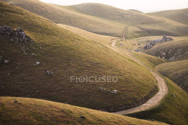View of green rolling hills, California, USA — Stock Photo