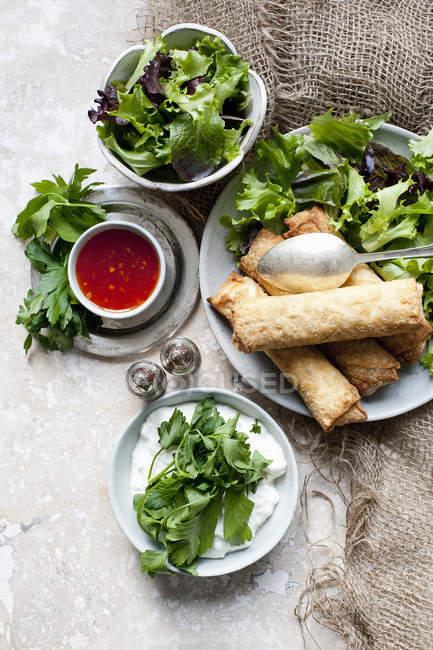 Involtini con insalata mista — Foto stock