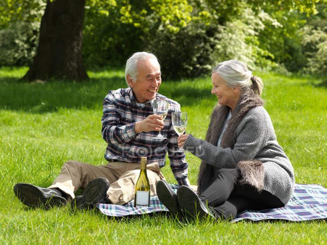 Coppia anziana brindare l'un l'altro — Foto stock
