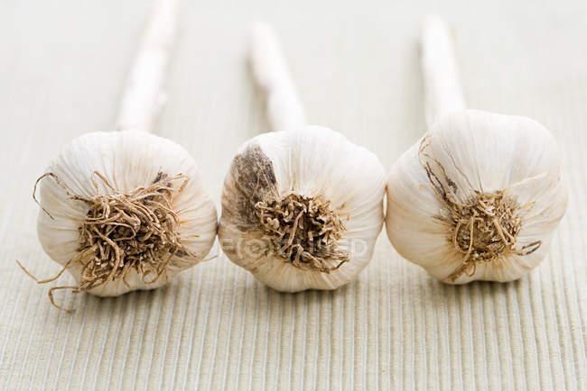 Tres bulbos de ajo en una fila - foto de stock